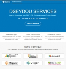 DSEYDOU SERVICES